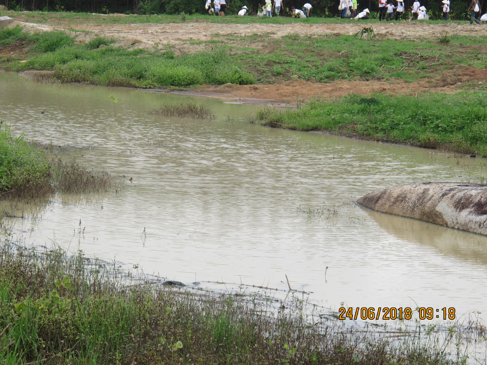 Another view of our pond