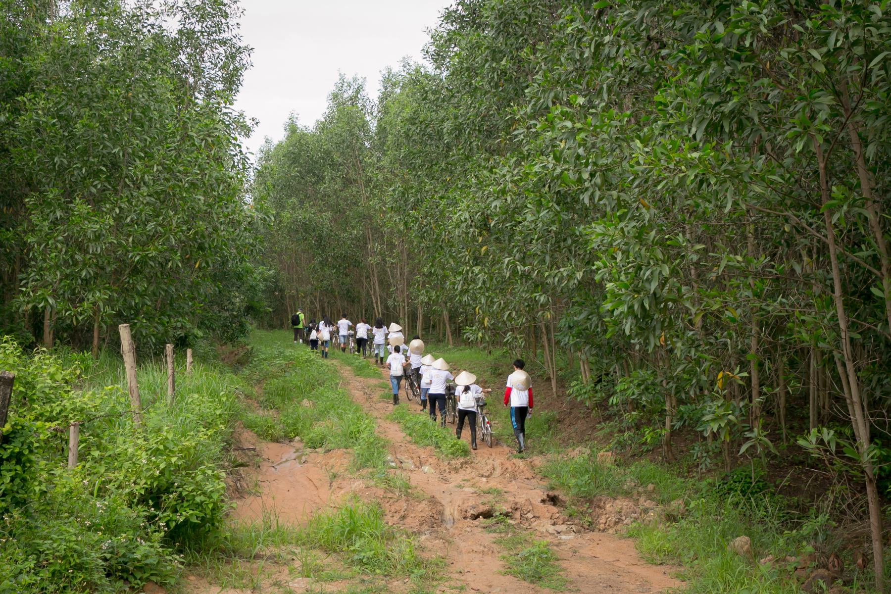 Walking to our forest area
